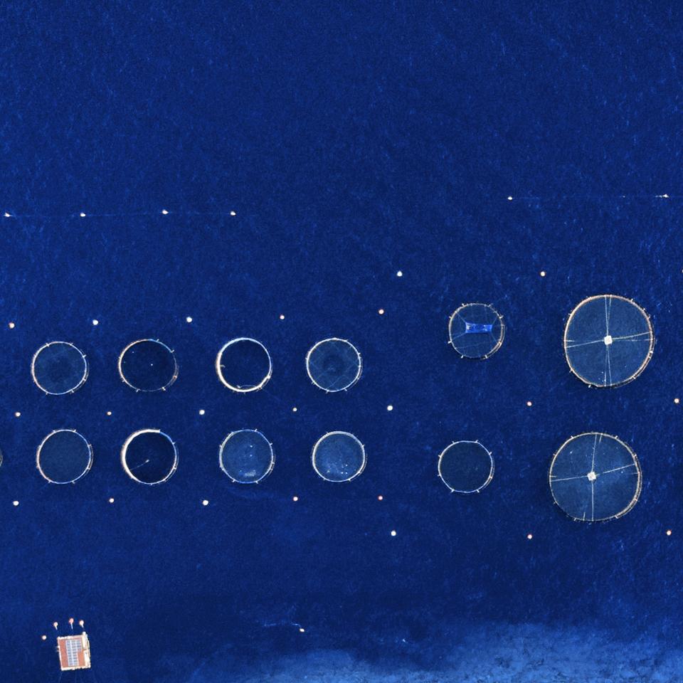 concept1_Seaculture_UMA